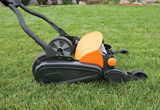 Lavish your lawn with love